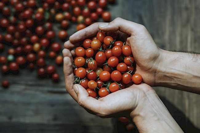 Cherry tomato - caloies, wieght