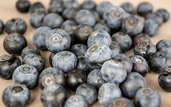 Blueberries - calories, nutrition, weight