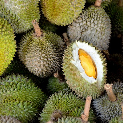Durian Vs Papaya I Ve Analyzed Nutrition Data
