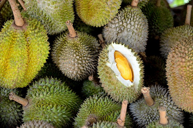 Durian - nutrition, vitamins, minerals