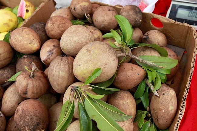 Sapodilla - nutrition, vitamins, minerals