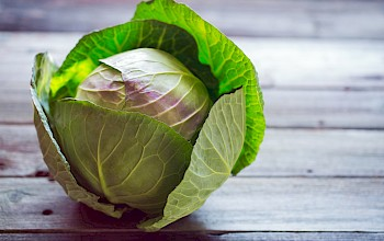Cabbage - calories, nutrition, weight
