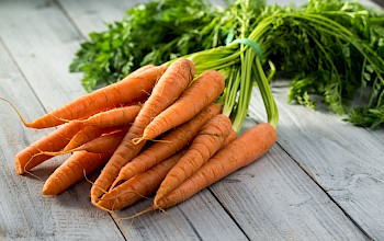 Carrot - calories, nutrition, weight