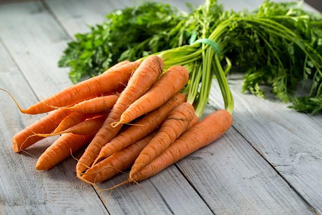 Carrot - nutrition, vitamins, minerals