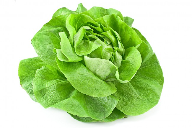 Lettuce - kalorie, kcal, ile waży