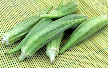Okra - calories, nutrition, weight