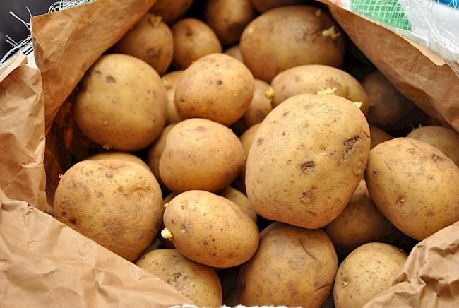 Potato - kalorie, kcal, ile waży