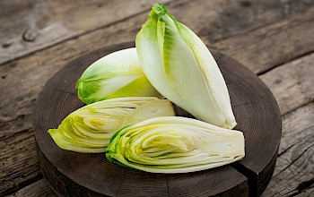 Salad chicory - calories, nutrition, weight