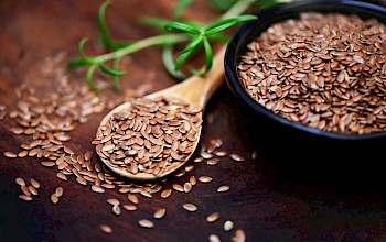 Linseed - calories, nutrition, weight