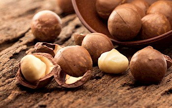 Macadamia nuts - calories, nutrition, weight