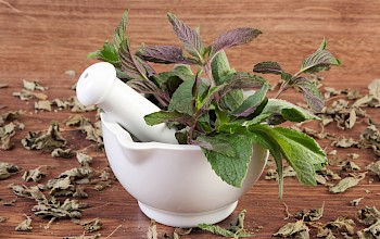 Mint - calories, nutrition, weight