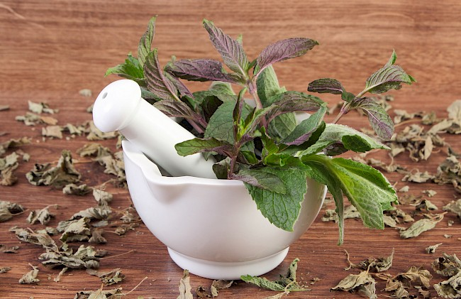 Mint - nutrition, vitamins, minerals