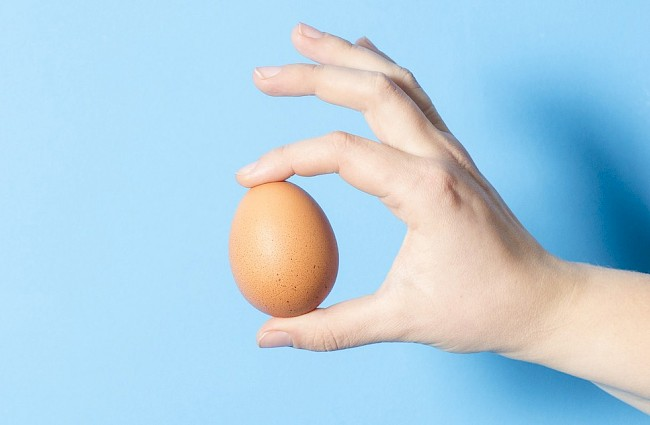 Egg - nutrition, vitamins, minerals