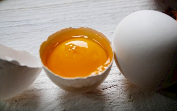 Egg yolk - calories, nutrition, weight