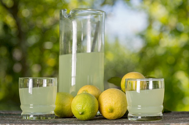 Lemon juice - nutrition, vitamins, minerals