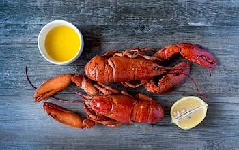 Lobster - calories, nutrition, weight