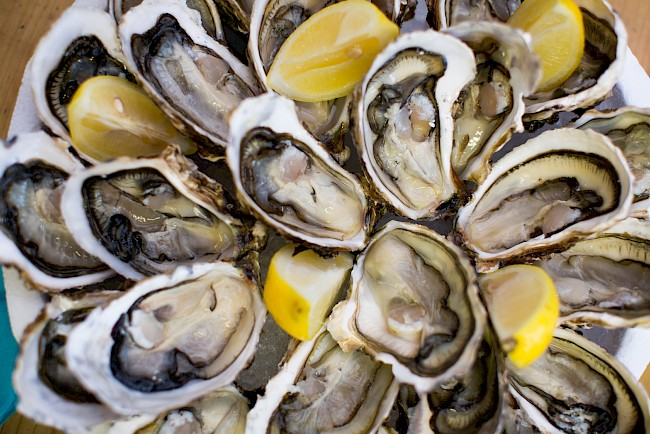 Oyster - nutrition, vitamins, minerals