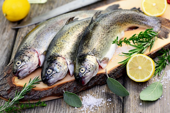 Trout - nutrition, vitamins, minerals